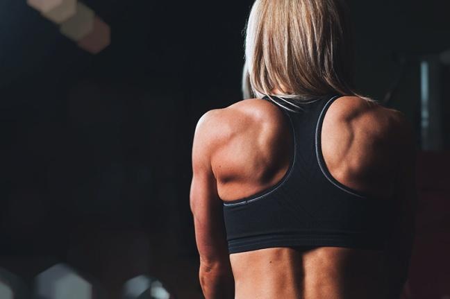 Back bodybuilding